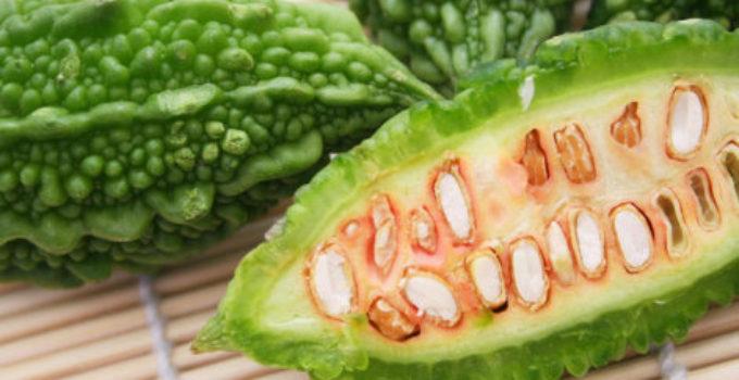 karela bitter melon