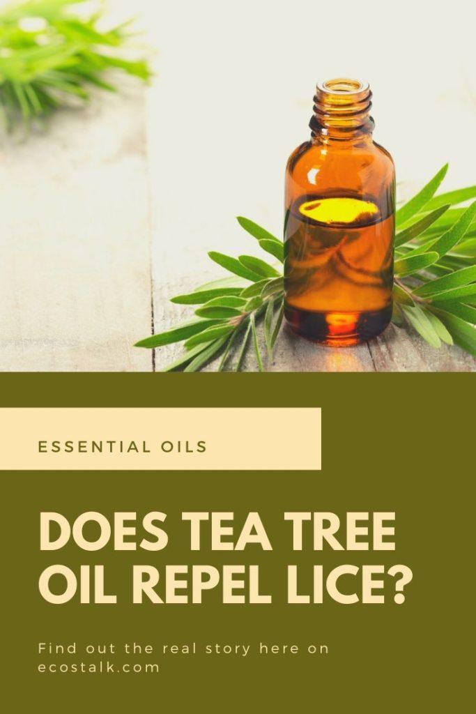 tea tree repel lice ecostalk