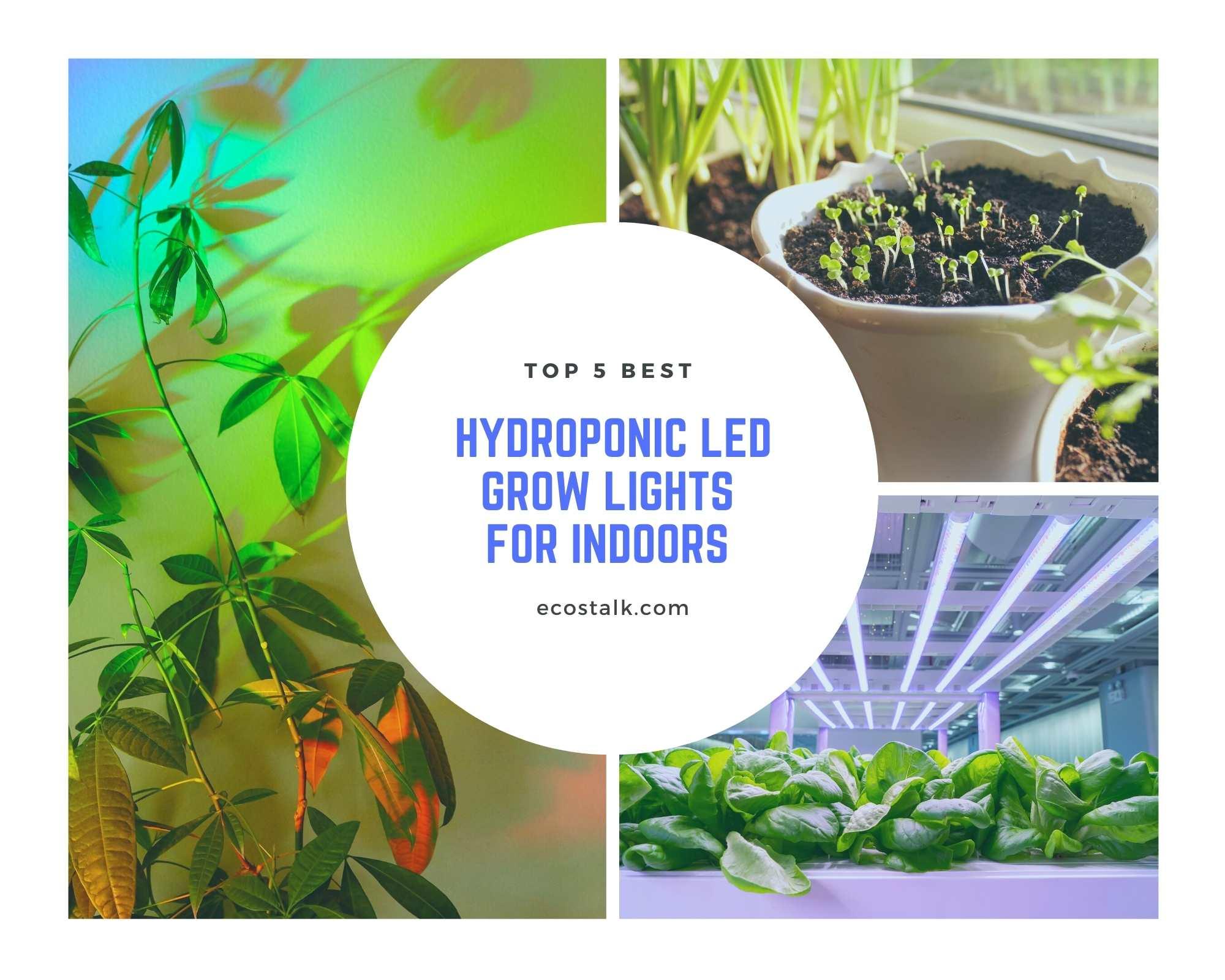 best hydroponic grow lights header